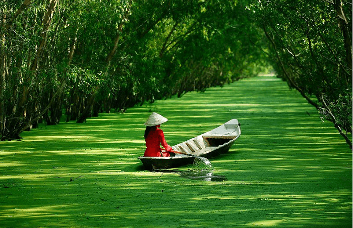 Insight Mekong Delta Tour
