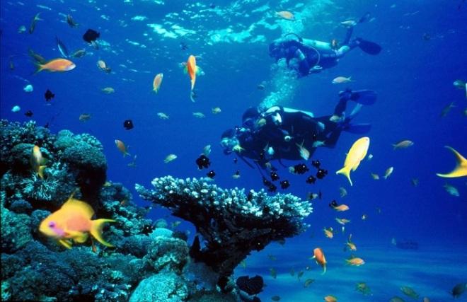 Nha Trang Snorkeling Tour